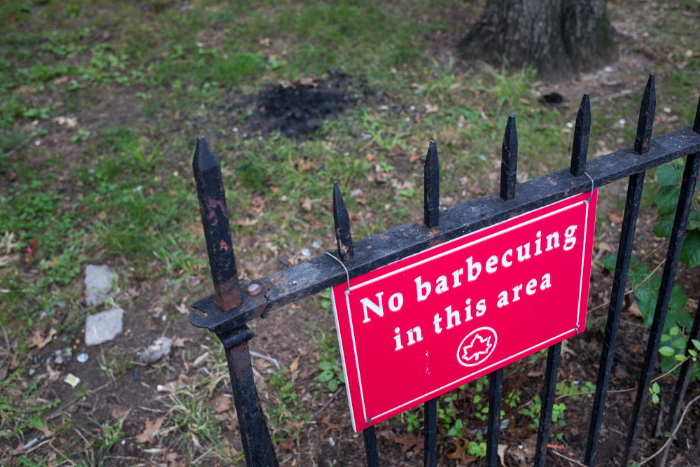 The charred, ashy remains of a barbecue pit rest on the ground behind a sign prohibiting barbecuing in Fort Number Four Playground off the southwestern corner of the Jerome Park Reservoir. Residents near the playground, nestled in with Washington's Walk, have complained about illicit barbecuing some say has worsened in recent summers.