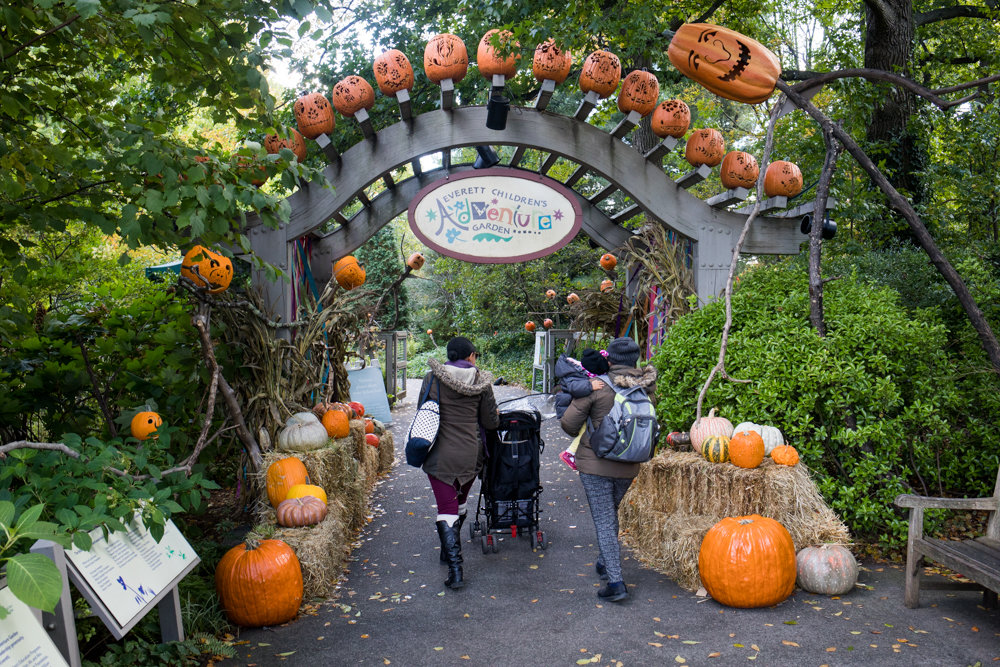 People walk into the Spooky Pumpkin Garden at the New York Botanical Garden.