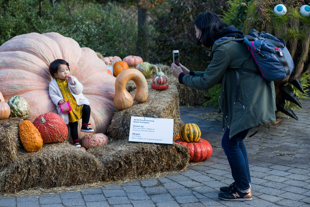 Kozue Sano, right, takes a picture of her daughter, Yuasa Fujita, in front of a one-ton pumpkin at the New York Botanical Garden.