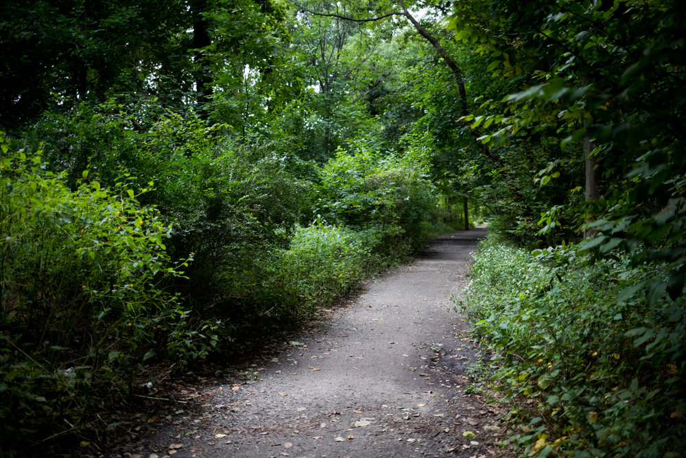 A long strip of the Old Putnam Trail in Van Cortlandt Park could be covered in asphalt in the not-too-distant future if city parks officials have their way. But some residents who frequent the trail fear paving it could threaten its ambiance as a respite from the churn of urban life beyond Vannie's boundaries.