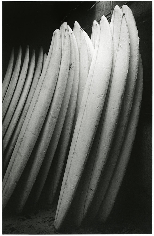 Anthony Friedkin photographed surfboards in Santa Monica Canyon in 1977.