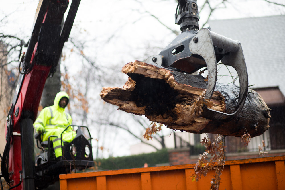 A parks department employee uses a crane to lift a section of a tree that collapsed along Sedgwick Avenue between Van Cortlandt Avenue West and Stevenson Place.