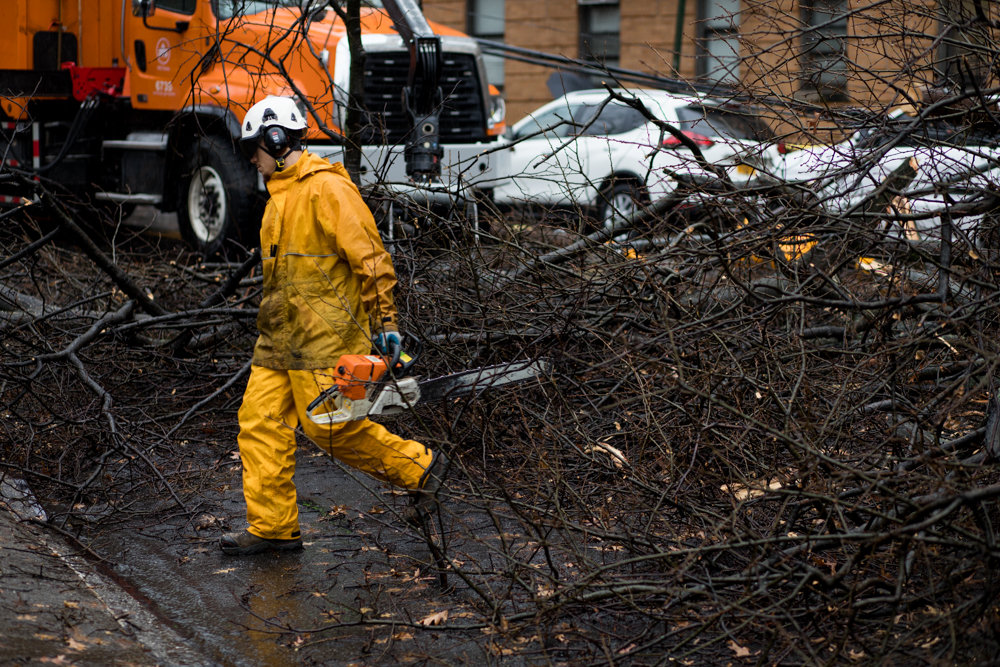 A parks department employee carries a chainsaw amid the detritus from a tree that collapsed along Sedgwick Avenue between Van Cortlandt Avenue West and Stevenson Place.