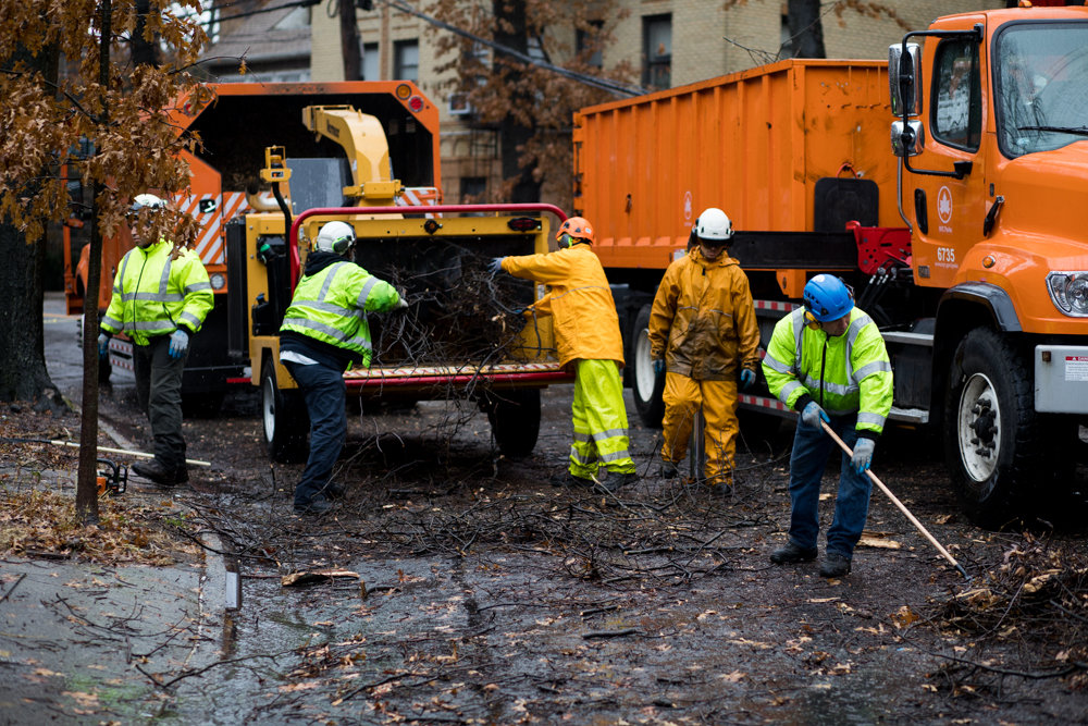 Parks department employees work to clear debris from a collapsed tree along Sedgwick Avenue between Van Cortlandt Avenue West and Stevenson Place.