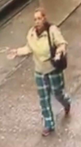 Police are looking for this woman for questioning about the theft of a dropped wallet at the 1 train station at West 231st Street and Broadway last month.