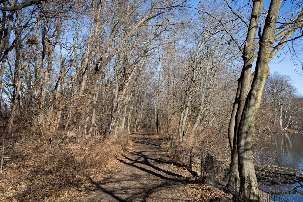 The Putnam Trail will soon be a smooth walkway after an upcoming paving project, but Kingsbridge Historical Society president Nick Dembowski has been looking for a way to commemorate the African-American slaves whose skeletons were believed to be found along the trail in the early 20th century.