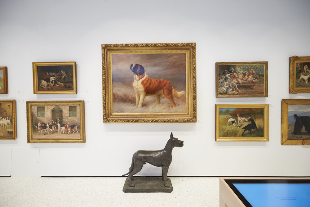 Courtesy of David Woo