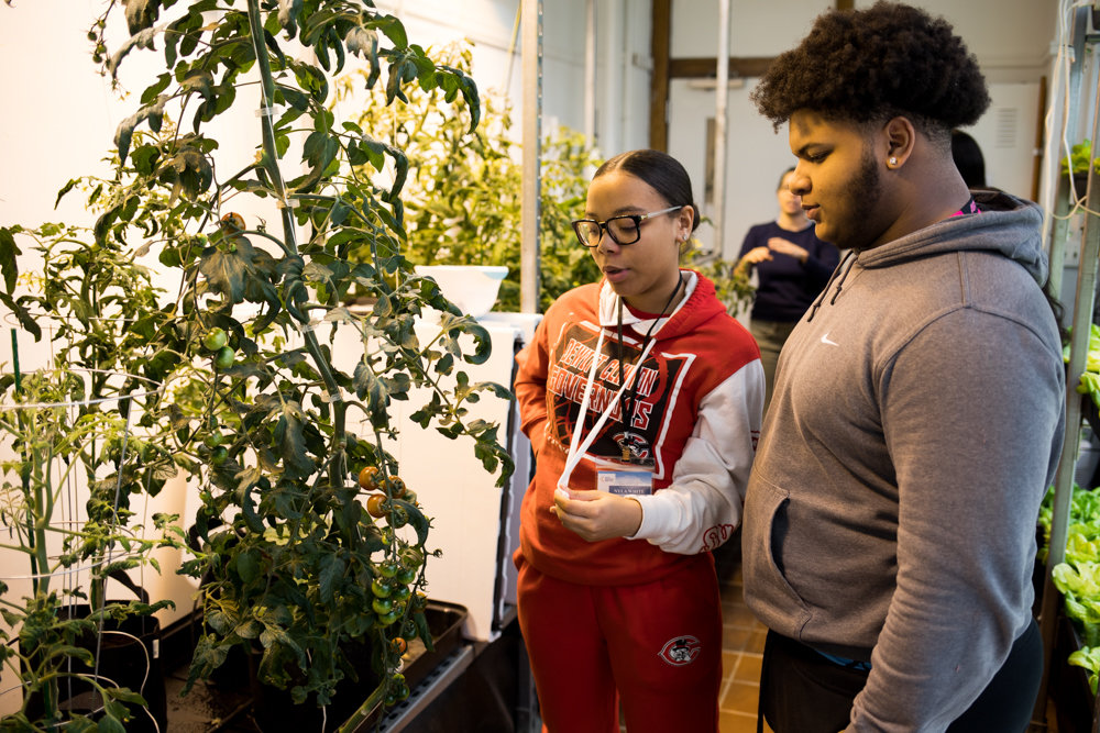 DeWitt Clinton High School juniors Maxwell Wood, right, and Nyla Wood talk about the tomatoes grown in their school's hydroponics lab. Wood helped to construct the lab a year ago.