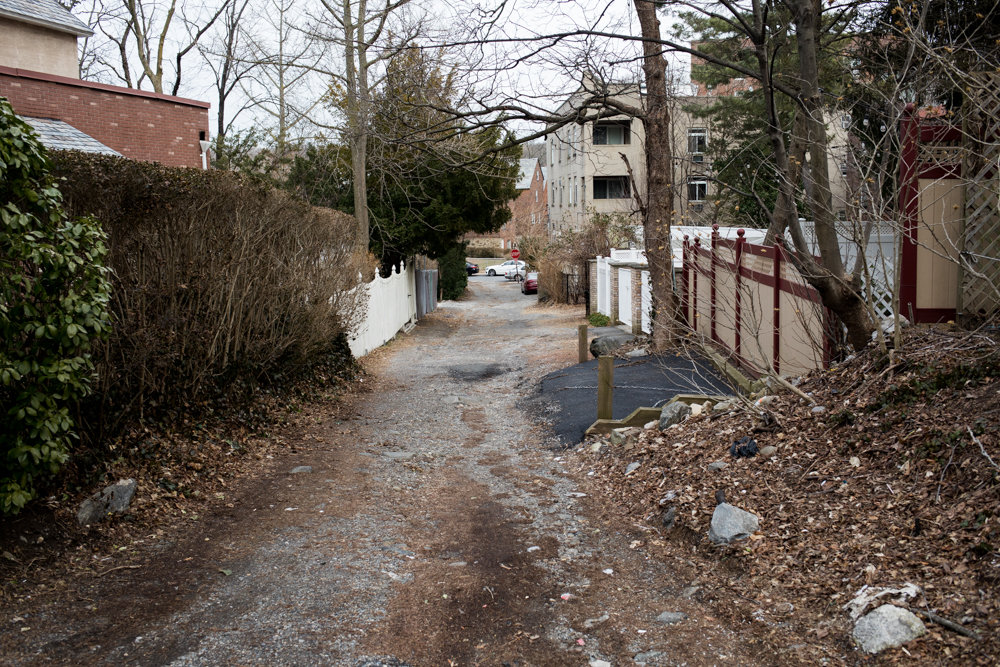 Residents near Thorne Lane, which sits between Spencer and Huxley avenues, would love to see the derelict road revitalized with fresh paving. Betsy Silverman-Hochhauser complained to 311 about it last year, but still, nothing has been done — something Councilman Fernando Cabrera wants to address at the systemic level.