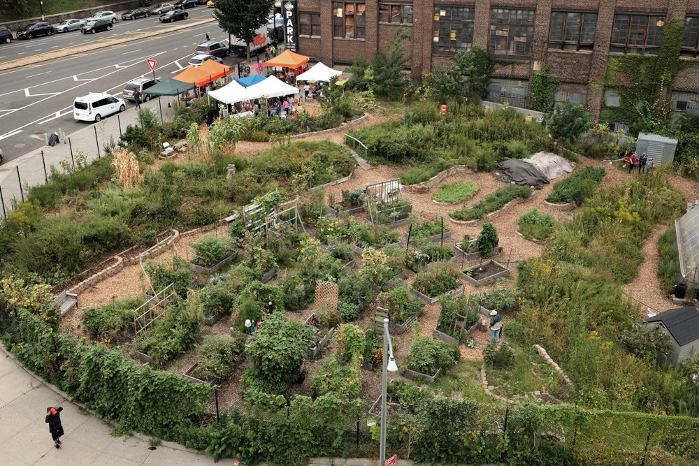 New Roots Community Farm is one of a number of community gardens that is part of Bronx Green-Up, an initiative by the New York Botanical Garden.