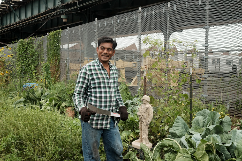 New York Cares volunteer Mo Harun works in Bissel Gardens last year, joining many volunteers who periodically work on the second Saturday of the month. 'Putting Down Roots: Celebrating 30 Years of Bronx Green-Up' is on display at the New York Botanical Garden's Ross Gallery through April 28.
