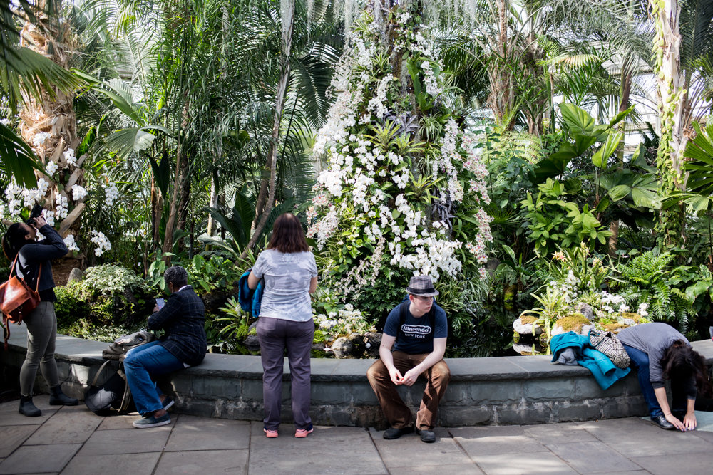 Visitors at the New York Botanical Garden rest near one of the displays in 'The Orchid Show: Singapore,' on display through April 28.