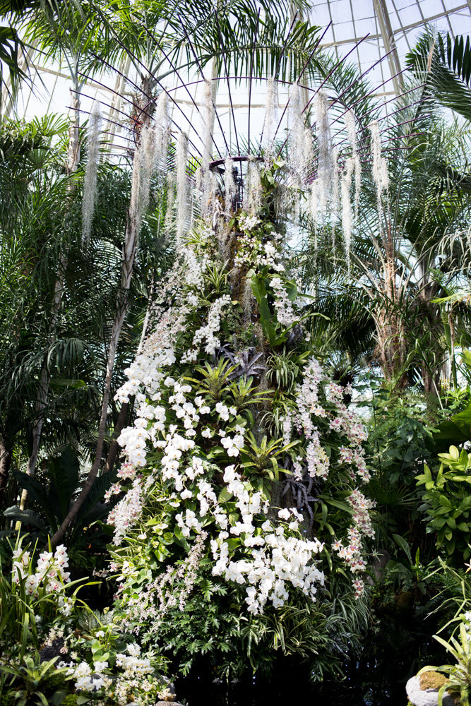 'The Orchid Show: Singapore' at the New York Botanical Garden pays homage to Singapore's supertrees, vertical gardens that can be as tall as 160 feet. At the botanical garden, they're scaled down for the Enid A. Haupt Conservatory. The show is on display through April 28.