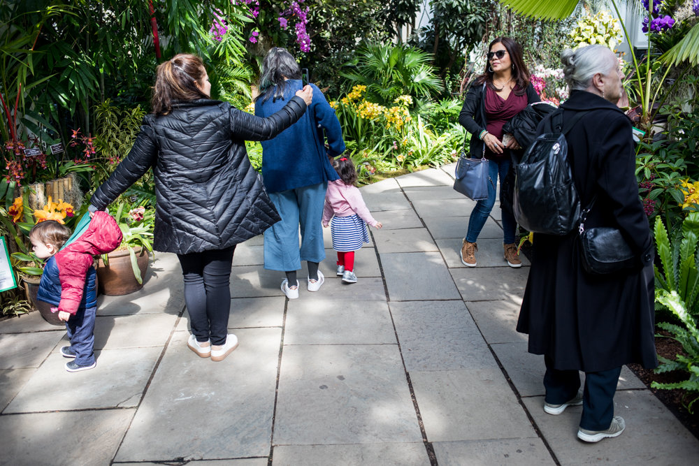 Visitors to the New York Botanical Garden take in 'The Orchid Show: Singapore,' on display through April 28.