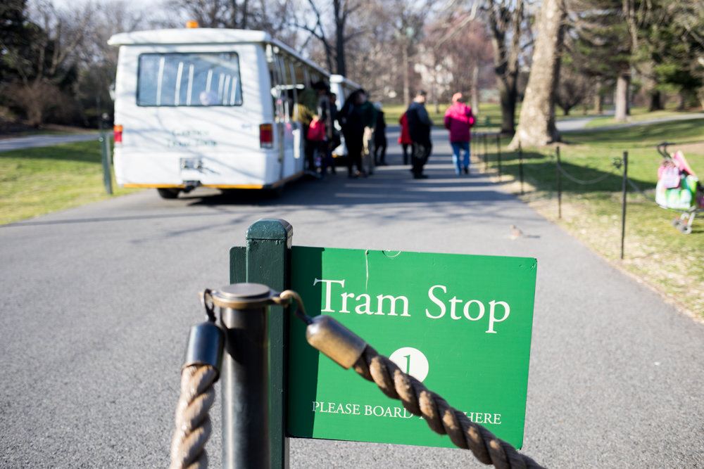 The tram is the New York Botanical Garden's main transportation option for visitors looking for an easier way to get around the boogie down's verdant floral oasis. It's slated for a $1 million upgrade.