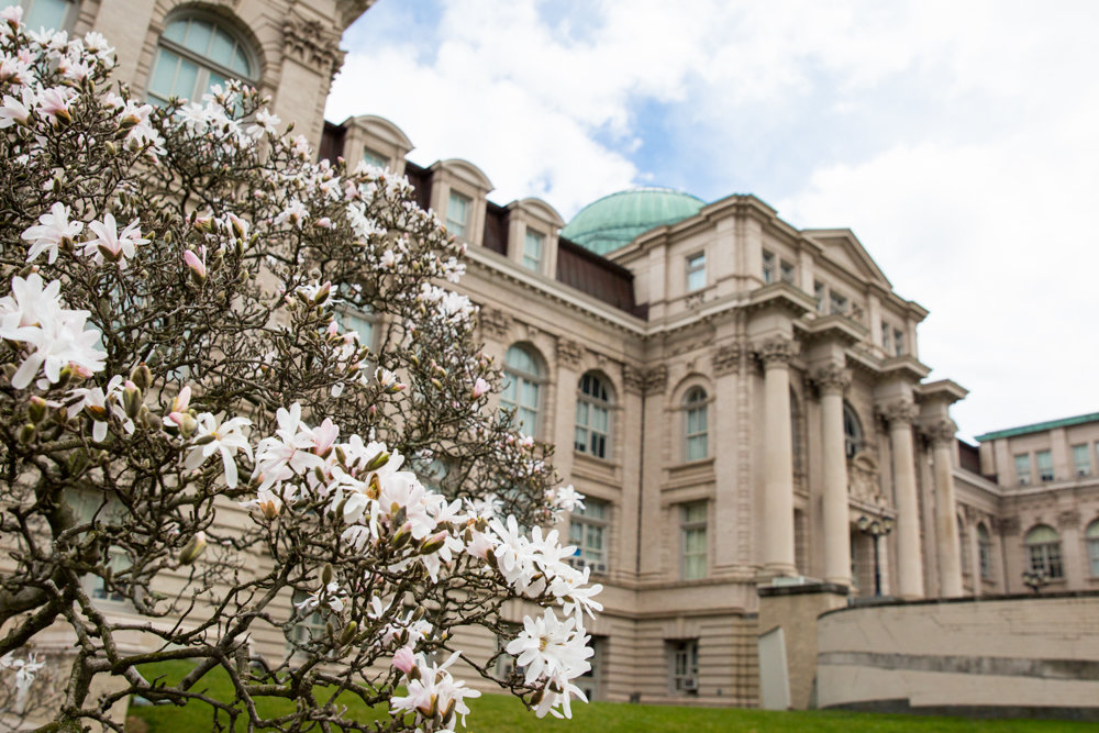 One of the many projects Elizabeth Kals Reilly was involved with at the New York Botanical Garden was the LuEsther T. Mertz Library.