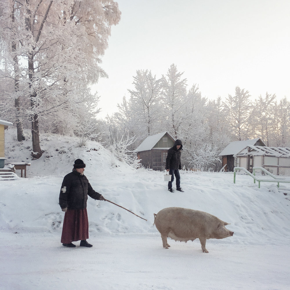 Dmitry Markov photographed a winter scene in the Russian region of Pskov in 2016.