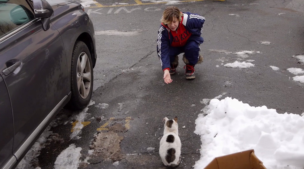 Tara Green gestures to Cloudy in a snowy parking lot in a scene from 'The Cat Rescuers,' a documentary profiling four volunteers in Brooklyn who engage in trap-neuter-return, a process that helps manage stray cat populations.