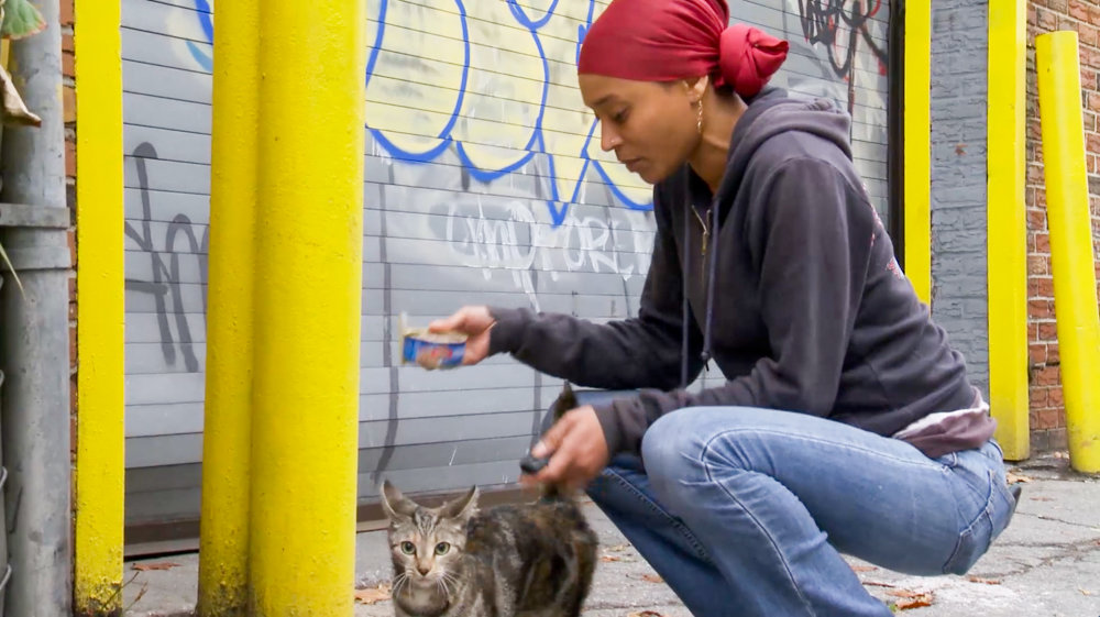 Latonya 'Sassee' Walker feeds an injured feral cat in a scene from the documentary 'The Cat Rescuers.'
