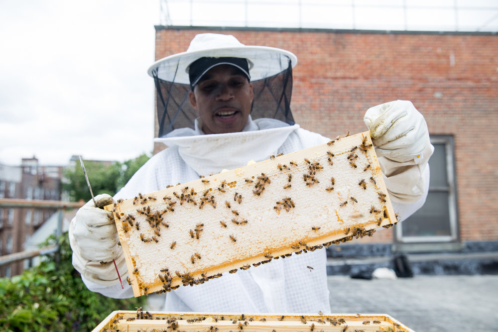 Sean Flynn holds up a beehive frame on the roof of the Kingsbridge Heights Community Center. Flynn started beekeeping four years ago, and enjoys educating people about the fine art of beekeeping.