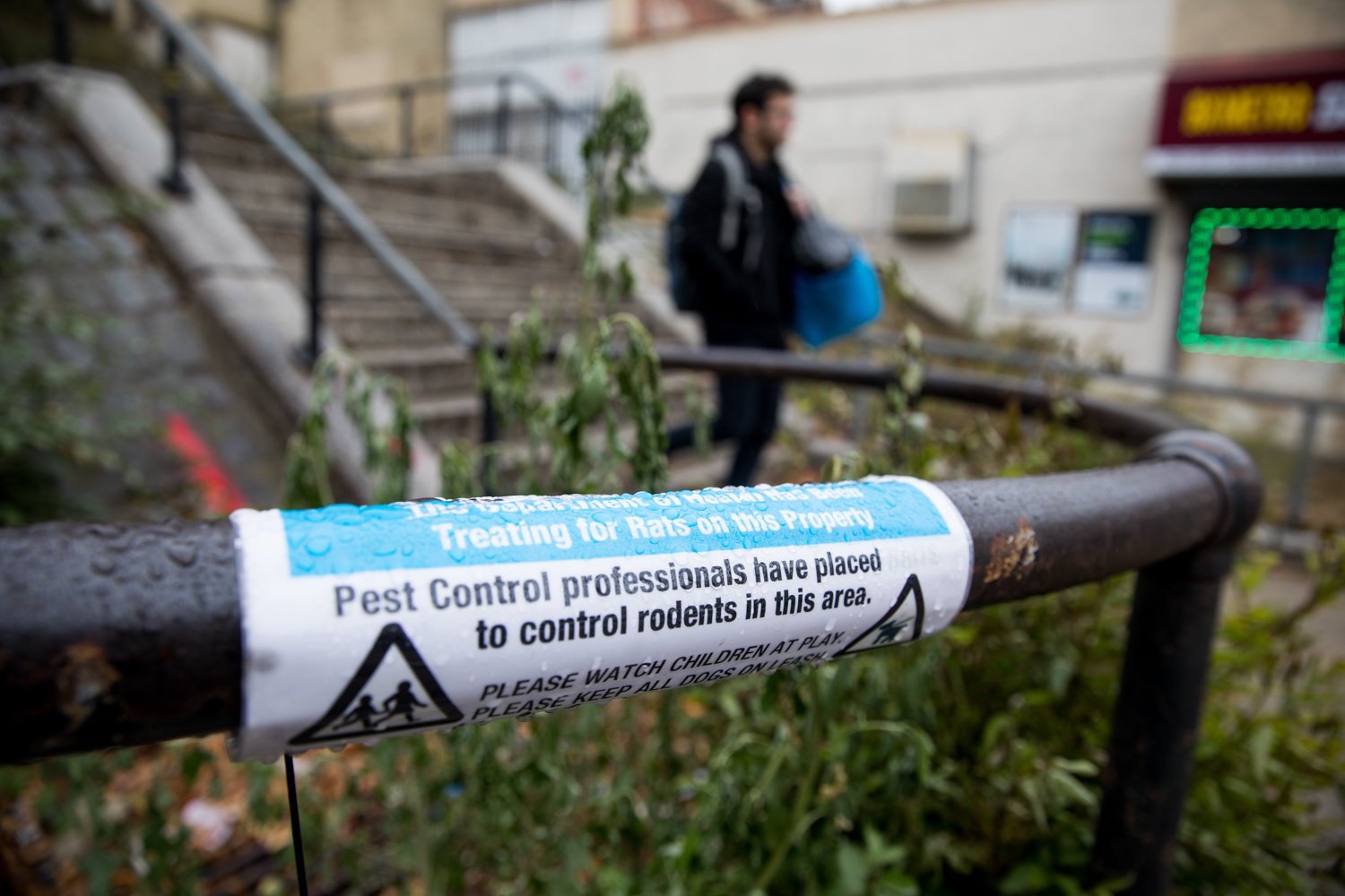 A sign affixed to a handrail along a step street between Cannon Place and Orloff Avenue indicates the area has been treated with baits in order to combat the rat population.