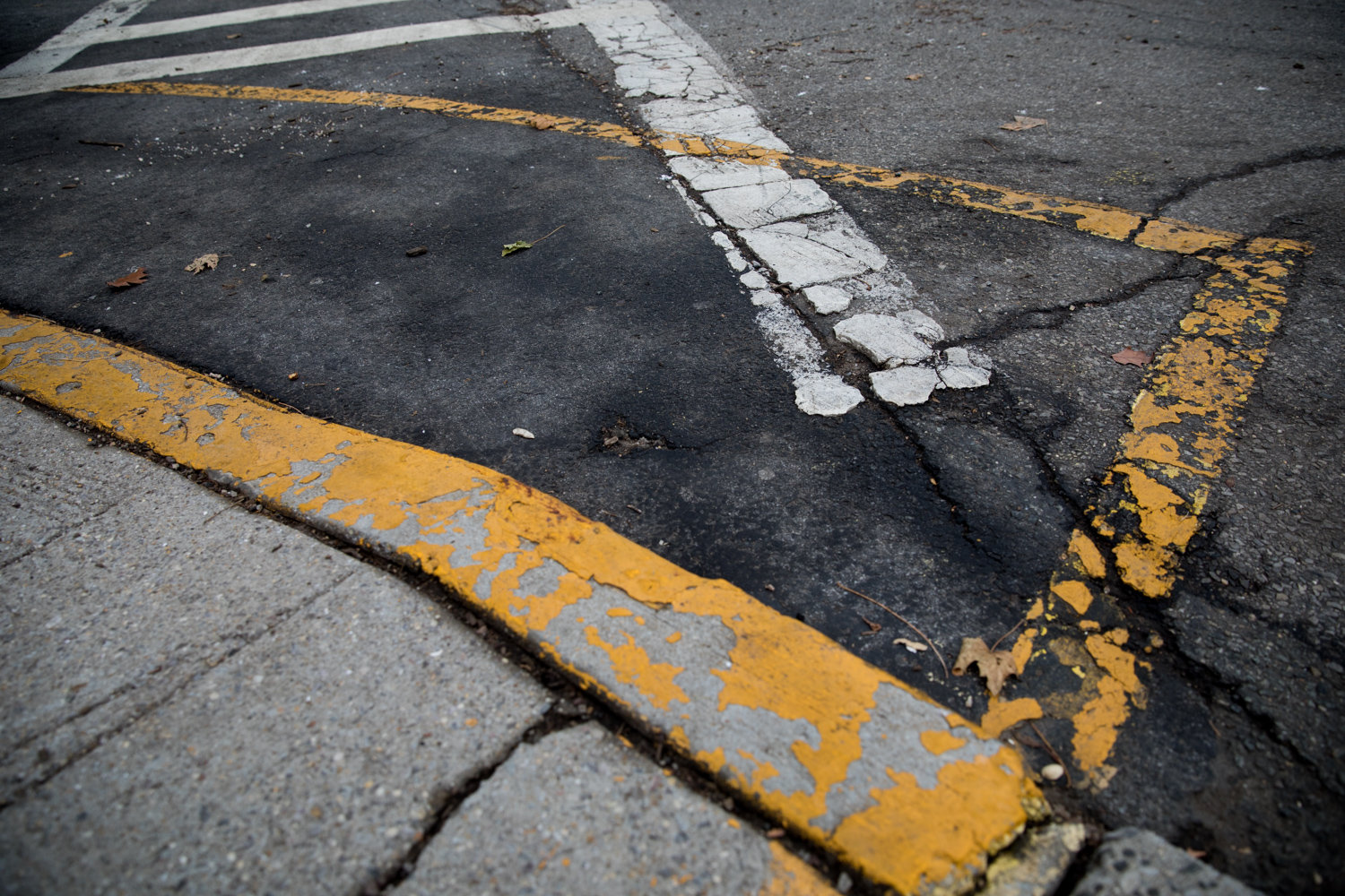 Yellow markings at a crosswalk along Arlington Avenue indicate where cars should not park.