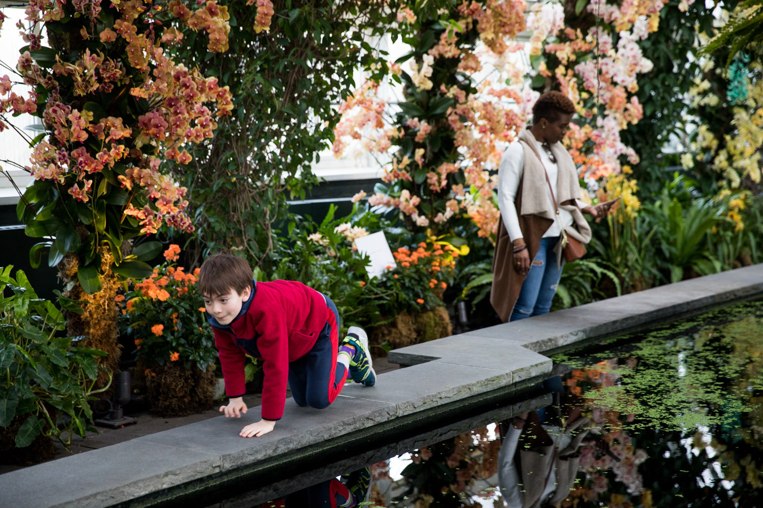 Visitors explore 'The Orchid Show' in the Enid A. Haupt Conservatory at the New York Botanical Garden.