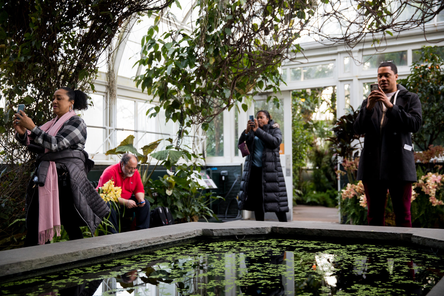 Visitors at the New York Botanical Garden take photos of orchid displays in the Enid A. Haupt Conservatory.