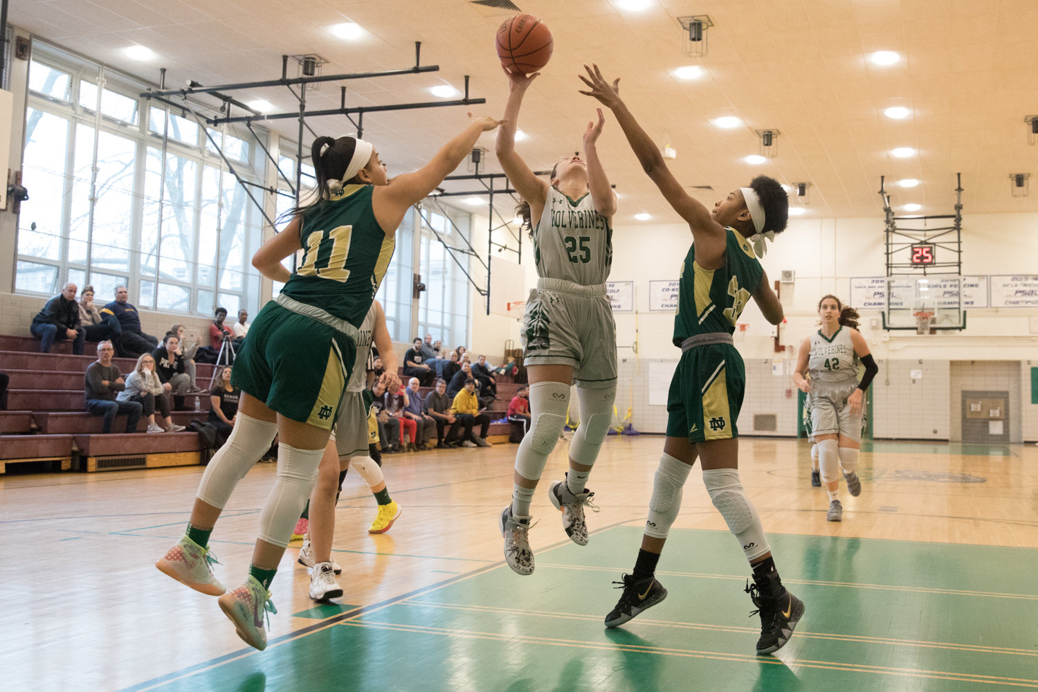 Bronx Science junior guard Carolina Lopez was mired in foul trouble against New Dorp last week, and was held to 12 points in the Wolverines' playoff loss to the Cougars.