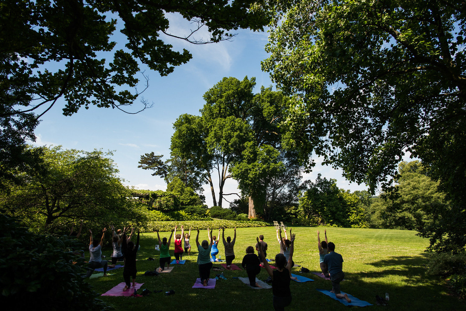 Before the coronavirus pandemic, Wave Hill offered yoga classes on its grounds. Now, the garden offers them online in a bid to keep people healthy while staying home.