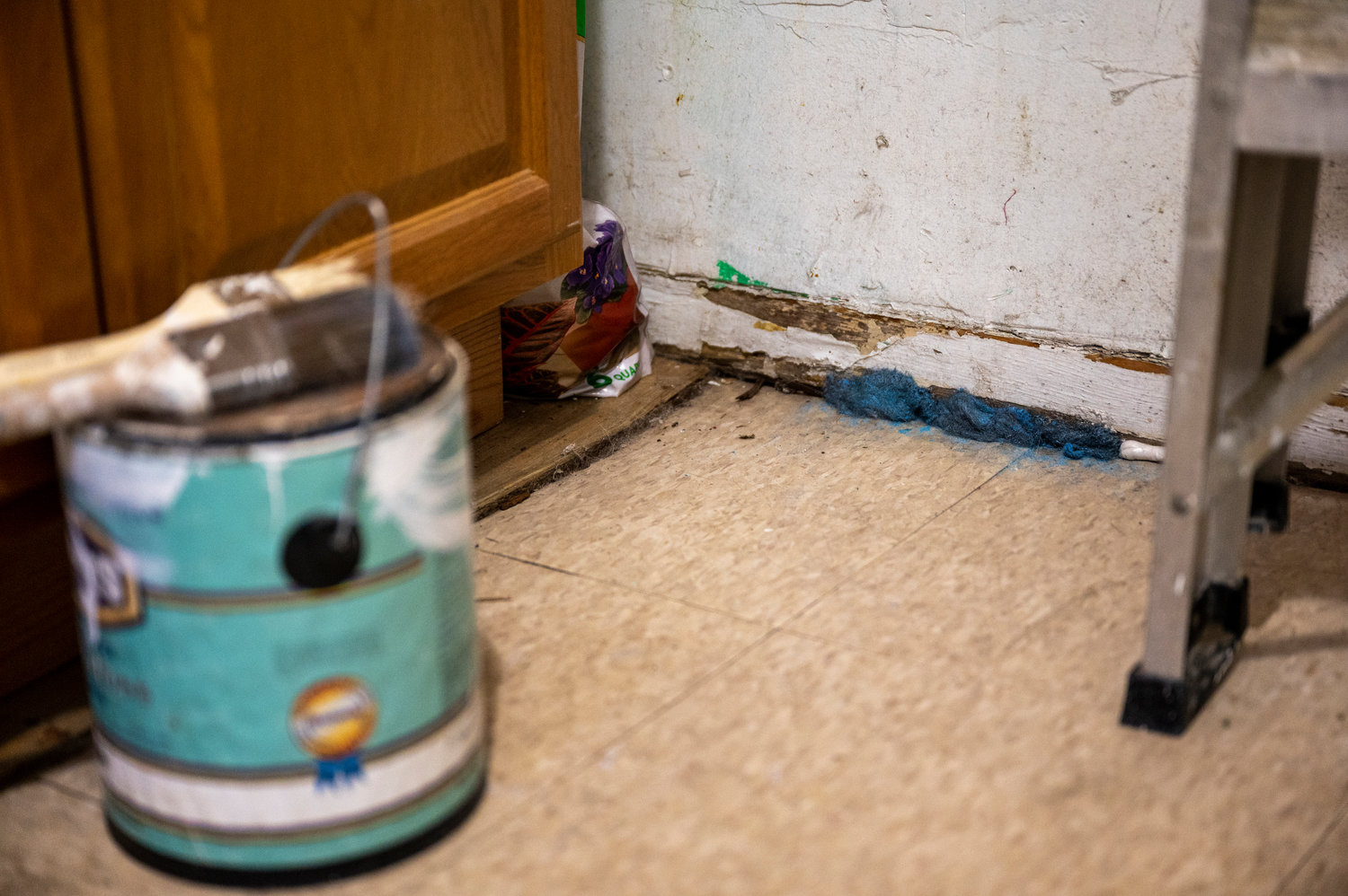 The superintendent at 3801 Review Place plugged the holes where rats crept into Kenya Fernandez's apartment, but mice continue to be an issue.