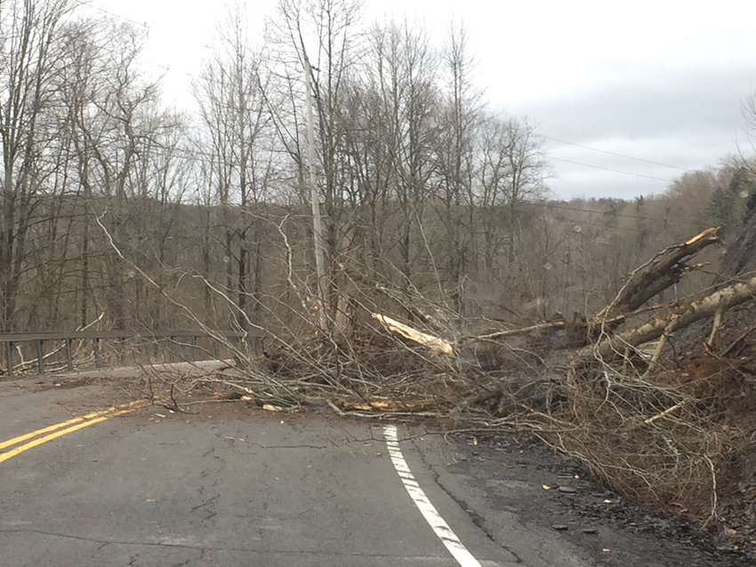WASHOUT —A pile of dirt and trees washed down onto a portion of Route 46 in the Town of Boonville this morning. The state Department of Transportation responded and cleaned up four loads of material, officials said. If you discover any such pile in the roadway, officials said to call 9-1-1.