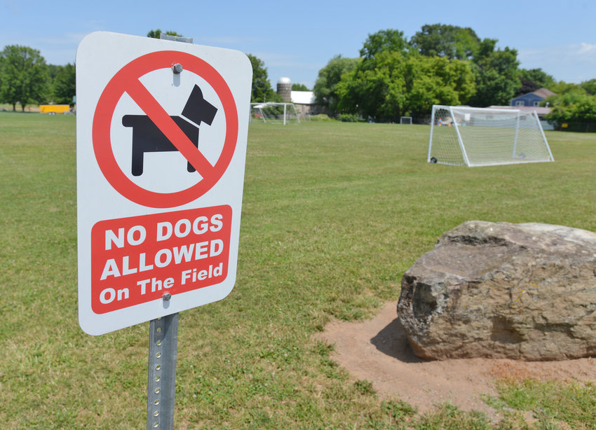 "NO DOGS — Because of ""on-going issues,"" dogs will no longer be allowed in Westmoreland Town Park, the town has announed. Above, a ""no dogs allowed"" sign is shown near one of the park's fields at the Stop 7 Road site."
