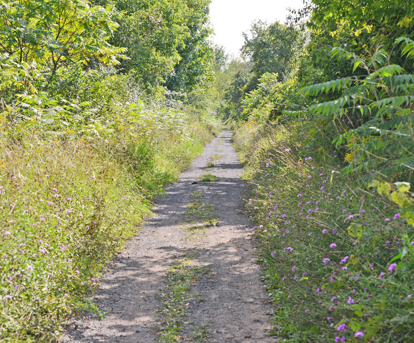 TRAIL SYSTEM A GO — This is part of the historic railroad corridor just south of Dugway Road in the Town of Kirkland that will now become part of a 2.5-mile trail for recreational use for the community. The town Highway Department will soon mow and level the area, and organizers are hoping the trail may be open for use by late fall.