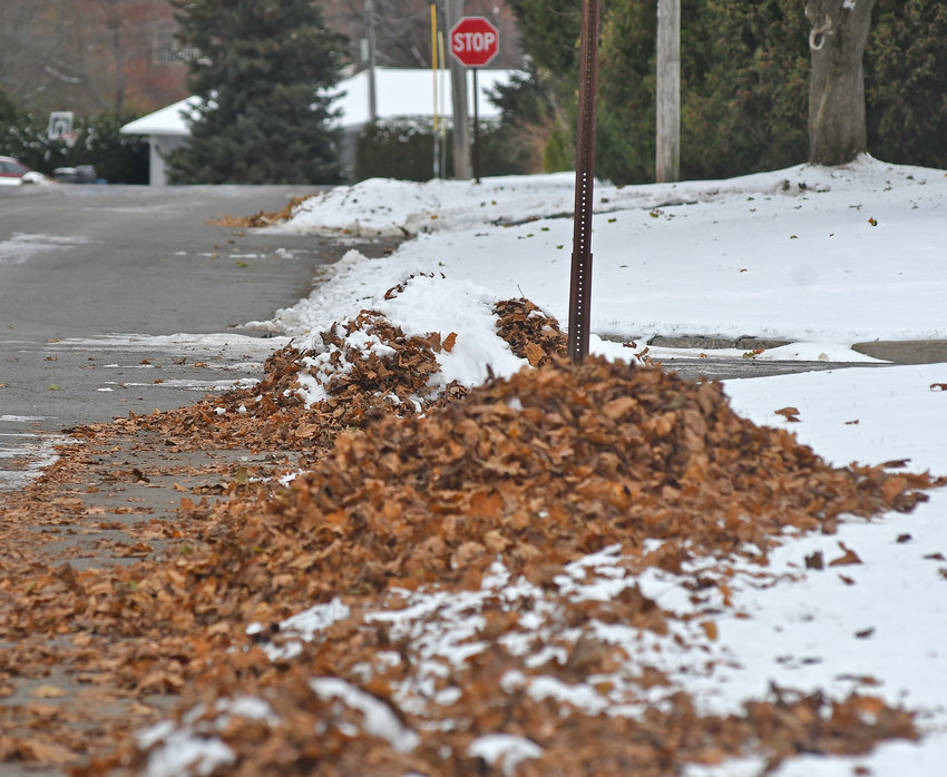 READY FOR PICKUP — A pile of leaves rest on a snowy curb, ready to be picked up on East Locust Street today. The city has announced its crews are moving on to the Thursday Green Waste Collection route for leaf pickup, starting tomorrow, Friday, Nov. 15.