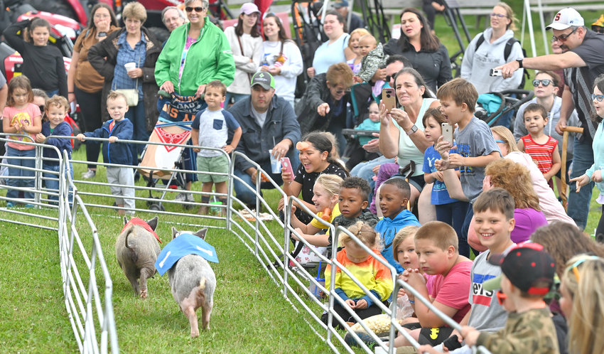 SQUEALS OF DELIGHT — Enthusiastic spectators cheer on their choices during one of the main events of the Swifty Swine Racing at the Boonville-Oneida County Fair on Friday. With rides, attractions, festival food, agricultural displays and contests as well as rides and entertainment, the fair continues through Sunday.