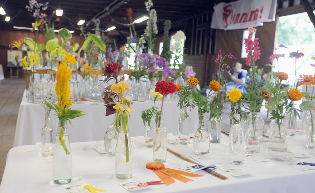 An overall of all the flowers entered into the flower show.  (Sentinel photo by Makenzi Enos)
