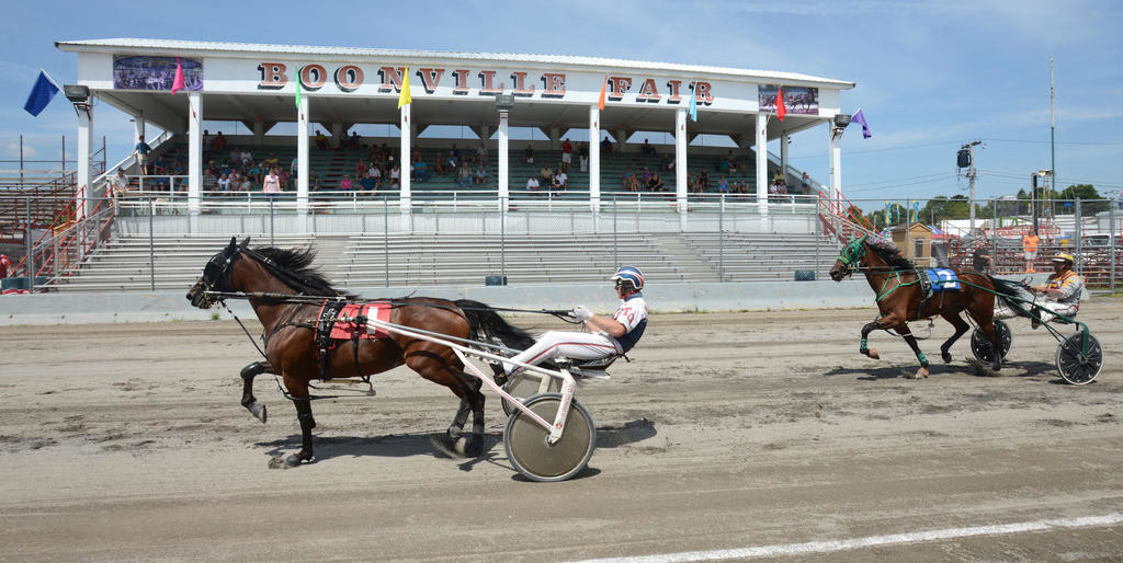 At the line- Three old trotters #1 Hollywood Jess driven by Truman Gale beats #2 Ron't Coren driven by Anthony Ellert at the New York County Fair Sire Stakes at the Boonville Oneida County Fair.  (Sentinel photo by John Clifford