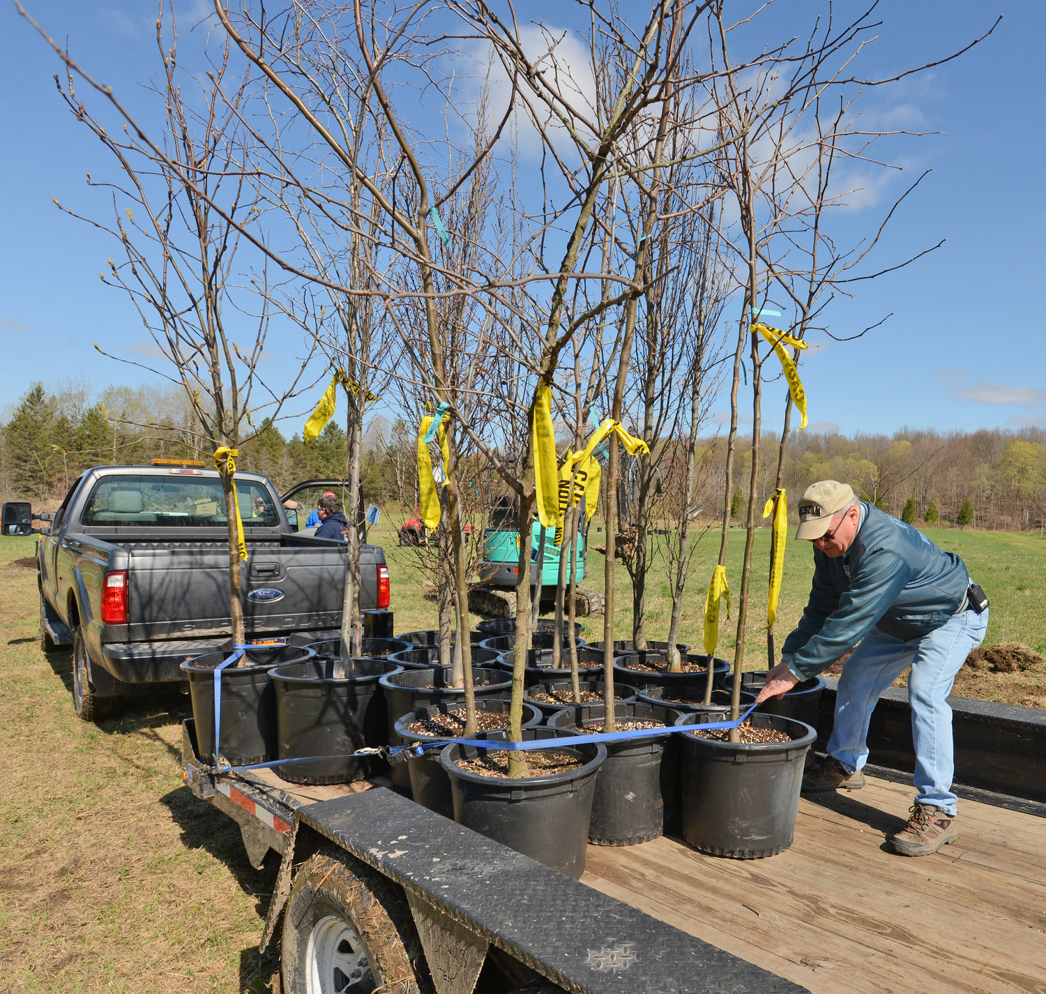 SPECIAL DELIVERY — Willard Streiff, supervisor for the Town of Floyd, loosens up a strap safeguarding a load of trees that will be planted along a trail the town is constructing.