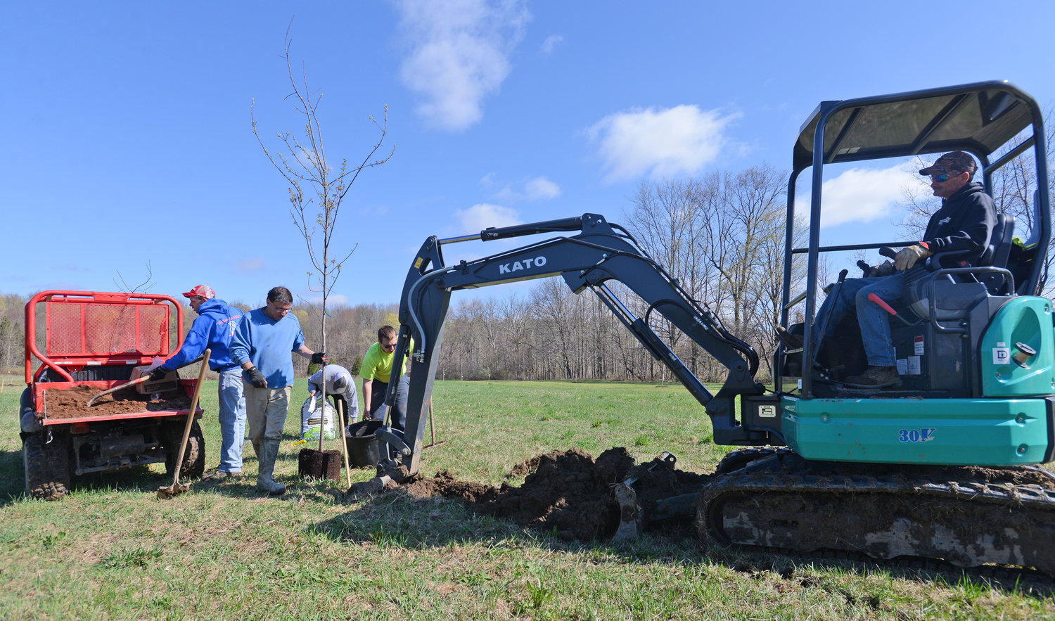 PLANTING SEASON — Backhoe operator Ken Yager digs a hole for a tree to be planted while town workers  Chris Taylor, Larry Gruby, Gabe Streiff (in the background) and Jordan Dygert prepare the red maple for planting.
