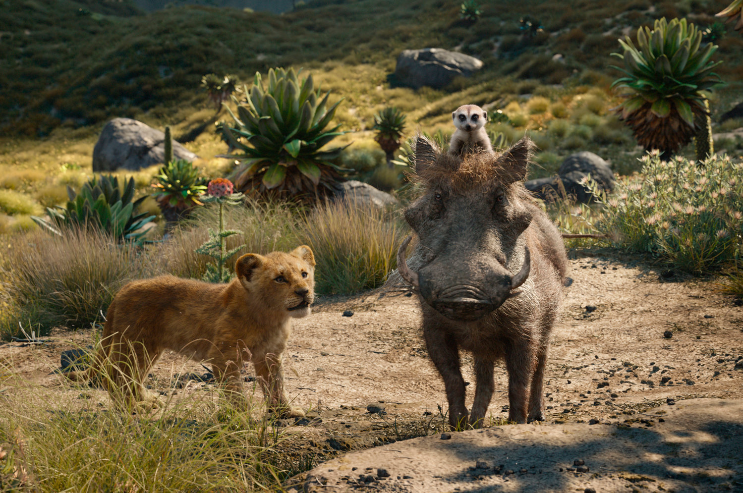 "YOUNG SIMBA AND FRIENDS — From left, young Simba, voiced by JD McCrary, Timon, voiced by Billy Eichner, and Pumbaa, voiced by Seth Rogen, in a scene from ""The Lion King."""
