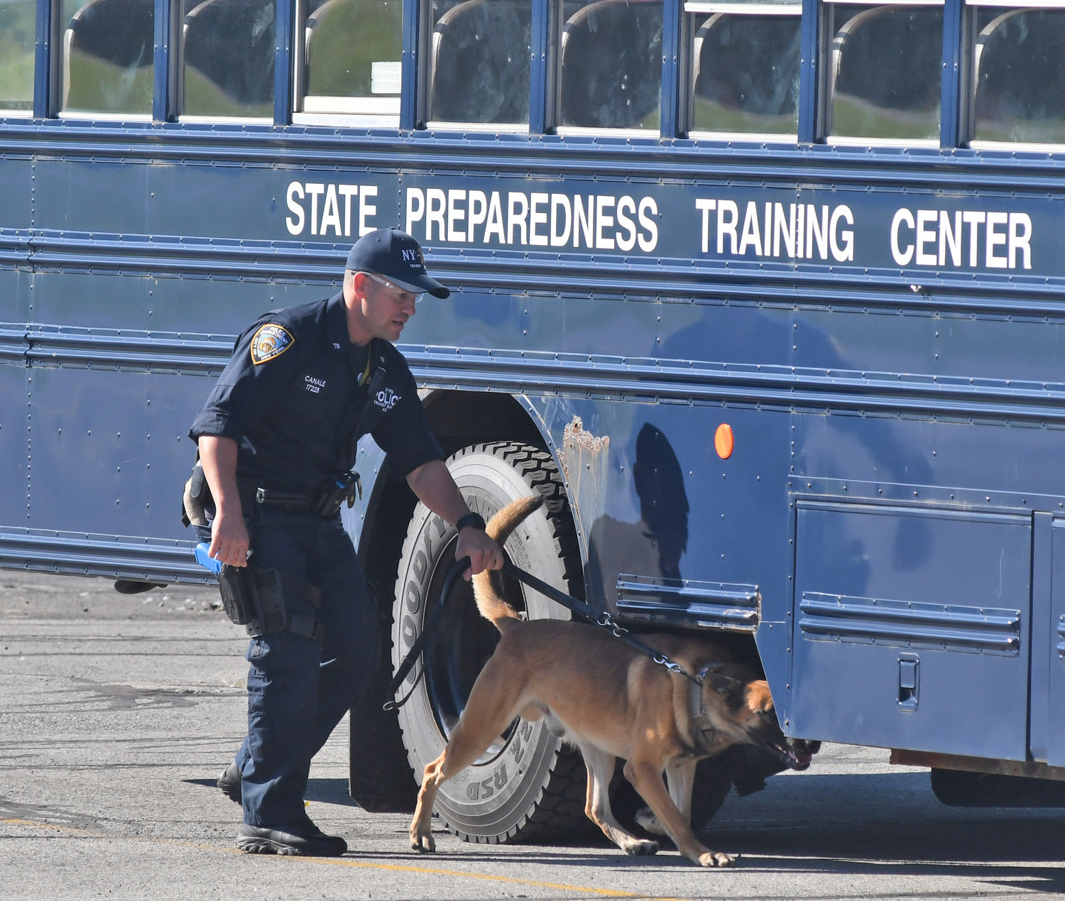 DOGS IN TRAINING — A New York Police Department officer and his K-9 partner sniff for bombs during a training session in Whitestown on Thursday.