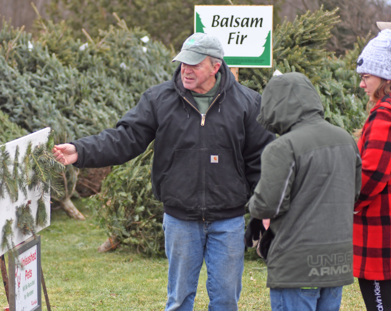 TREE TYPES — Dick Shuster shows a customers the different needles trees have at his Verona tree farm Friday morning.