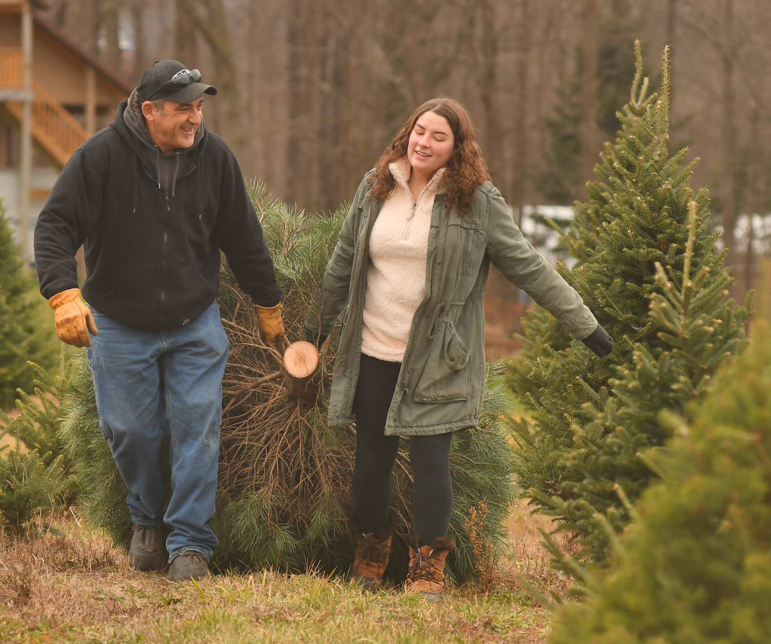 THE HAUL — David and Jordanna Rubino of Westmoreland, haul out the family Christmas tree at Shuster Tree Farm in Verona Friday morning.