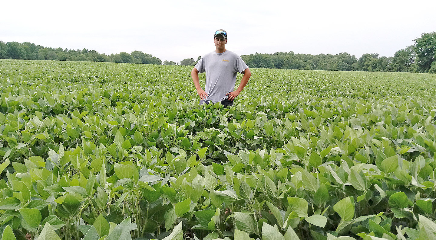 Mike Vecchio, standing in his soybean field on Lowell Road in Westmoreland.