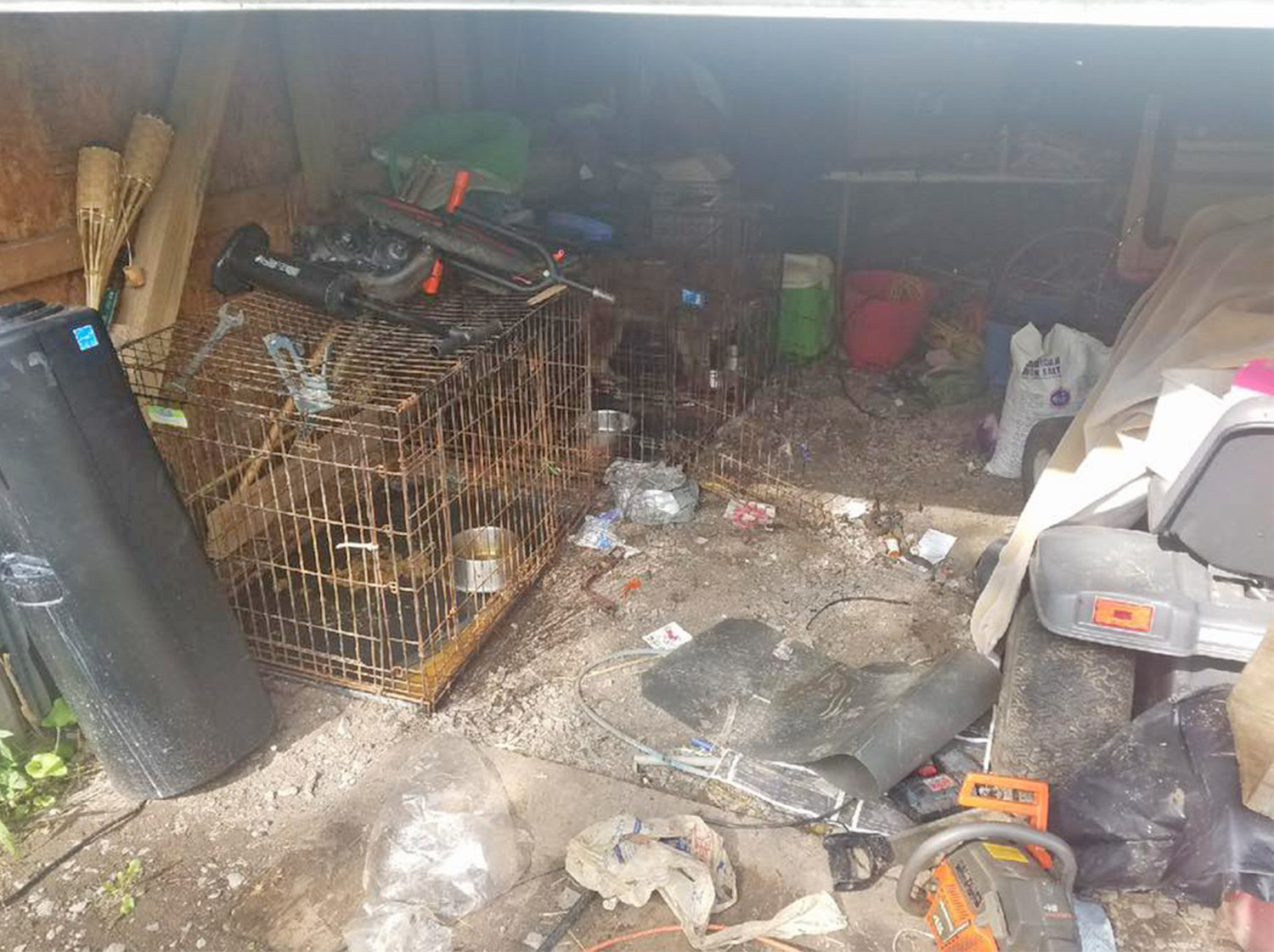 'DEPLORABLE CONDITIONS' — These are the living conditions of three dogs at the rural Cobb Street home under investigation by Oneida Police. Authorities said three dogs at the home were well fed and had water, but they were seized by law enforcement because of the living conditions.