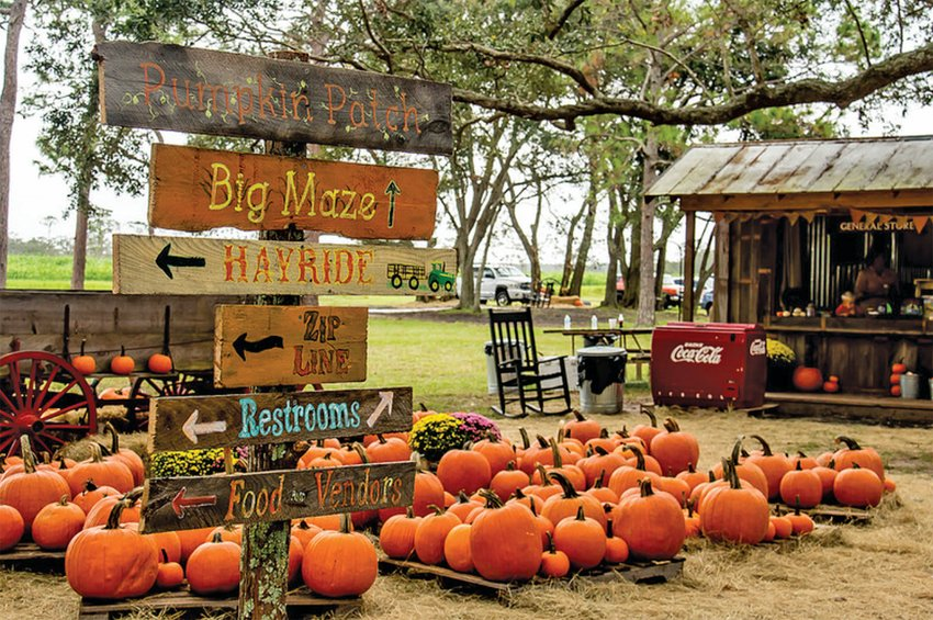 KENANSVILLE — Partin Ranch Corn Maze and Fall Festival in Kenansville offers 22 acres of festivities to help get you into the fall spirit.