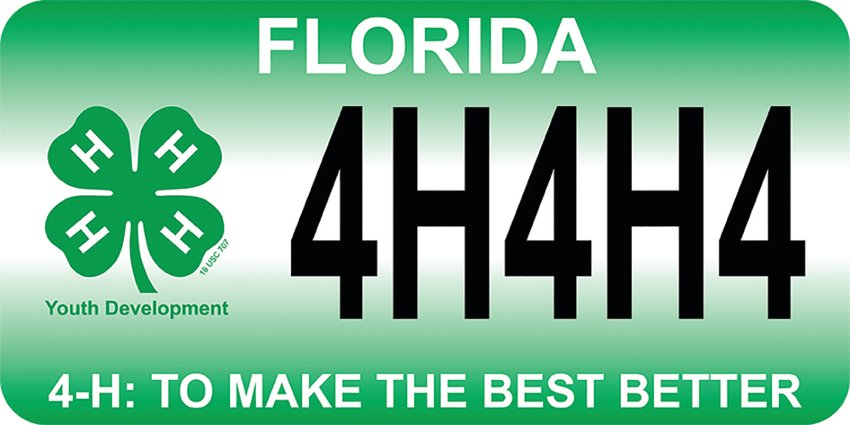 The 4-H specialty license plate design.