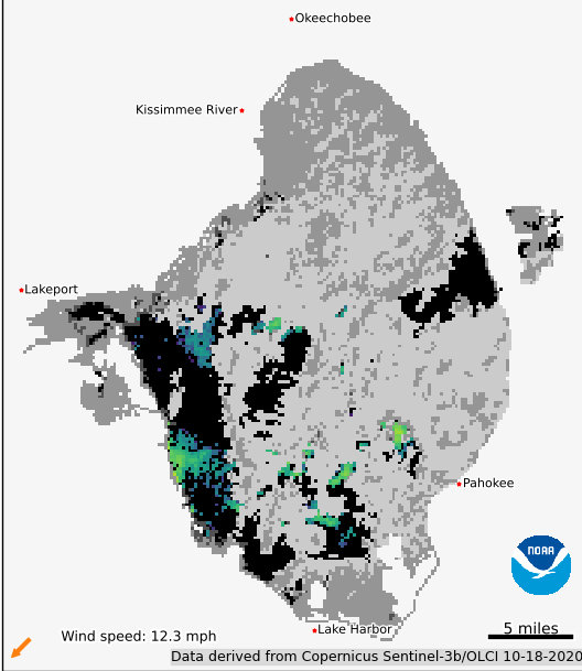 LAKE OKEECHOBEE — Clouds have made it impossible for the National Oceanic and Atmospheric Administration to get a good satellite image of Lake Okeechobee this week. That might be good news for the lake because cloudy skies tend to cause algae to die off.