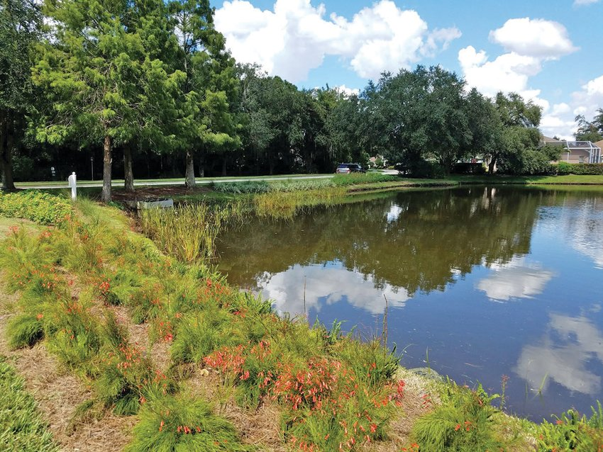 This picture is of a stormwater pond.